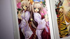 misaki kurehitoの壁紙プレビュー