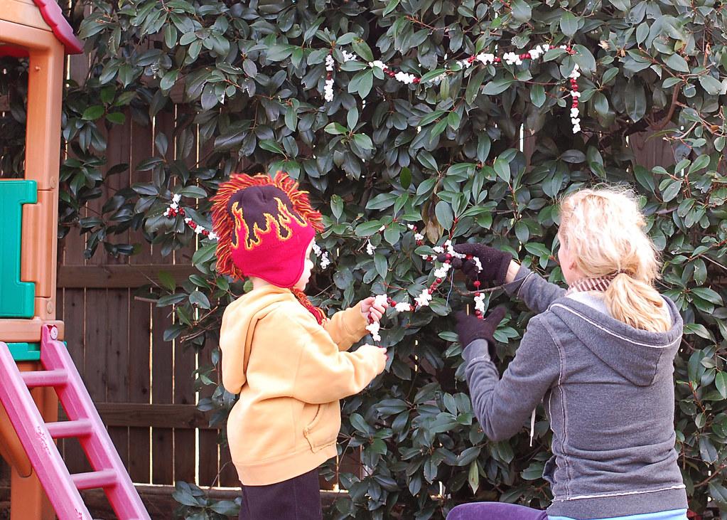 cranberry garland, me, Jayden, 2010