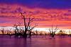 _MG_9337 (Wai Cheong Chan) Tags: lake sunrise landscape menindee pamamaroo andychan