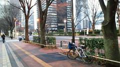 マドンと新宿高層ビル