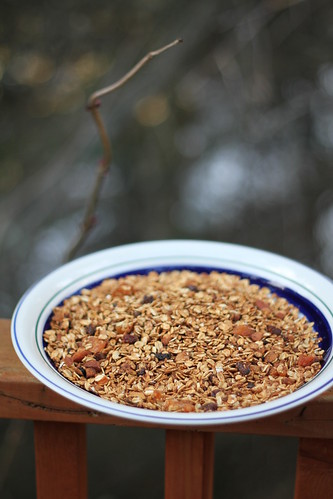 The most beautiful granola, ever.