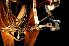 A mi lazo... (Eduardo Amorim) Tags: horse southamerica argentina leather criollo caballo cheval lazo spur spurs artwork sperone poncho cavallo cavalo gauchos pferd pampa loro riendas pala apero gaucho staffa leatherwork cuero lasso américadosul loros stirrup carona laço cuir gaúcho estribo amériquedusud provinciadebuenosaires recado gaúchos couro sudamérica sanantoniodeareco esporas cuoio suramérica américadelsur areco südamerika reata crioulo caballoscriollos criollos espora pilchas espuelas pilchasgauchas steigbügel recao pampaargentina americadelsud espuela crioulos cavalocrioulo cincha americameridionale caballocriollo rédeas eduardoamorim cavaloscrioulos estribera estrivo étrier pampaargentino