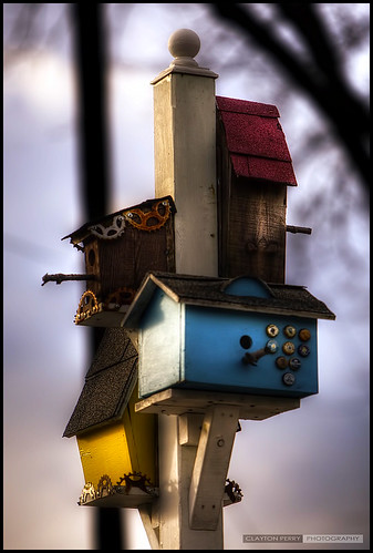 Birdhouses On Bleinheim
