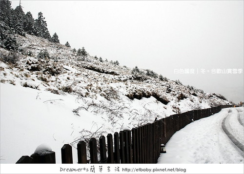 松雪樓前步道