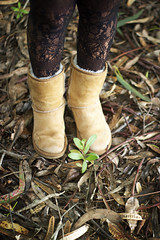uggz (am_bam) Tags: forest shoes lace tights shrubbery uggs