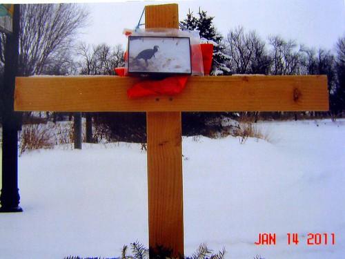 watertown turkey memorial