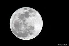 Full Moon - January 19, 2011 (skippys1229) Tags: moon night fullmoon ocala marioncounty 2011 ocalafl ocalaflorida january2011 canonrebelt1i january192011