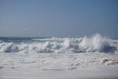 DSC05165 (neilreadhead) Tags: awt1 hawaii oahu waimeabay