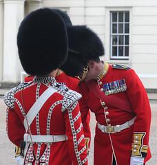 Img554999nx2 (veryamateurish) Tags: unitedkingdom british military army london wellingtonbarracks changingoftheguard publicduties ceremonial guardmounting newguard footguards householddivision grenadierguards