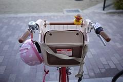 child seat kyoto