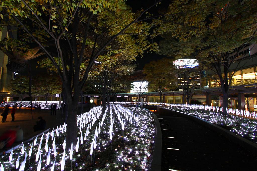 Roppongi Hills Xmas illumination (11)