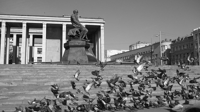 Moscow Doves