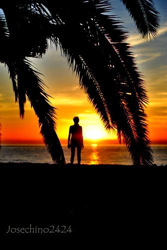 Buscando al amanecer.