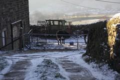 Snowy farmyard (Richard Carter) Tags: uk snow cobbles westyorkshire hebdenbridge farmyard calderdale caldervalley uppercaldervalley