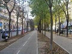 Двухсторонняя велодорожка