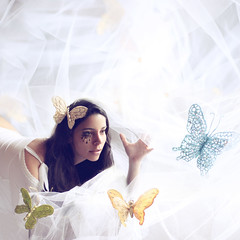 Enter Magic (AnnuskA  - AnnA Theodora) Tags: world light beautiful butterfly intense fantastic magic explore fantasy dreams stare dreamy frontpage tulle notacollage likealioness