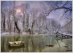 My dream winter (Jean-Michel Priaux) Tags: trees winter sky sun white lake france cold art texture ice nature water fog fairytale forest photoshop landscape boat nikon paradise magic hiver dream lac alsace dreamy paysage blanc hdr fort barque anotherworld savage sauvage saison wintry fret ried magique d90 sason priaux dereamland