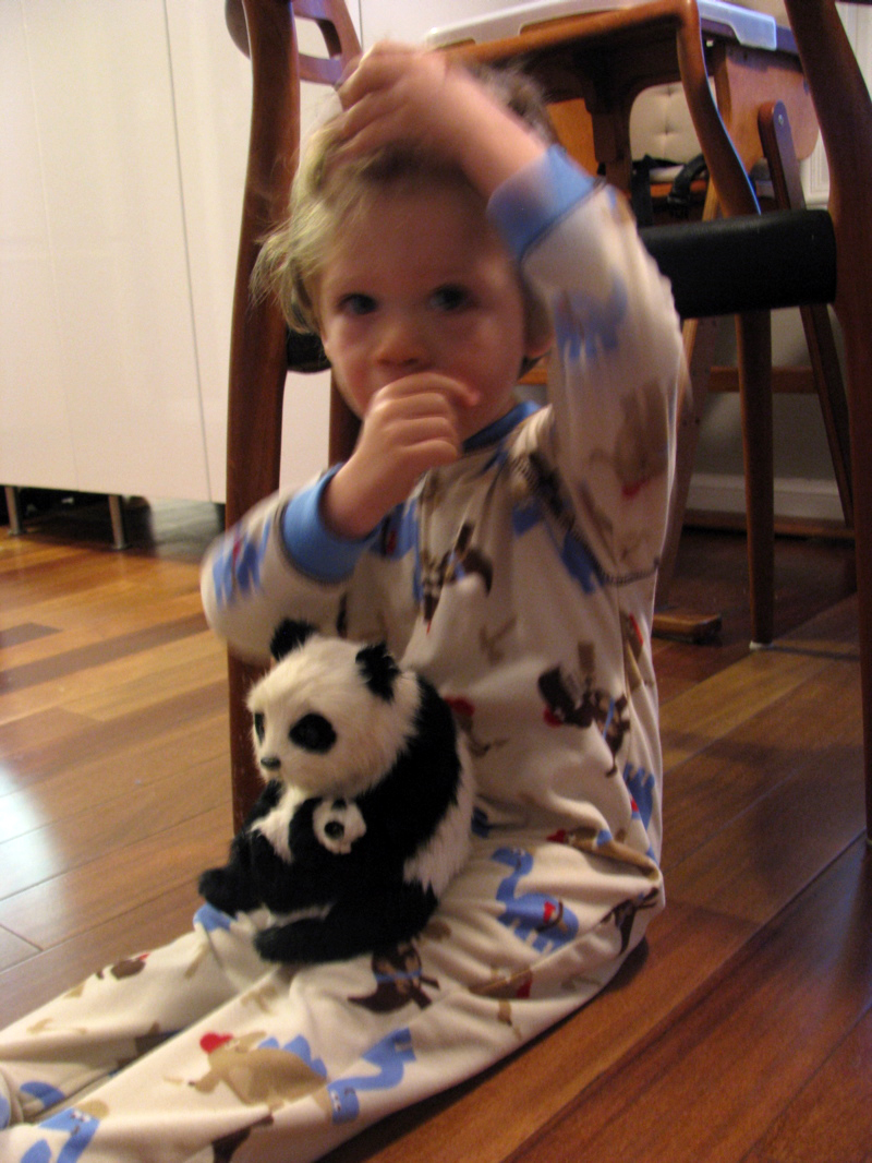 winter jammies, panda & comfort