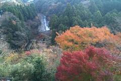 粟又の滝 展望台から