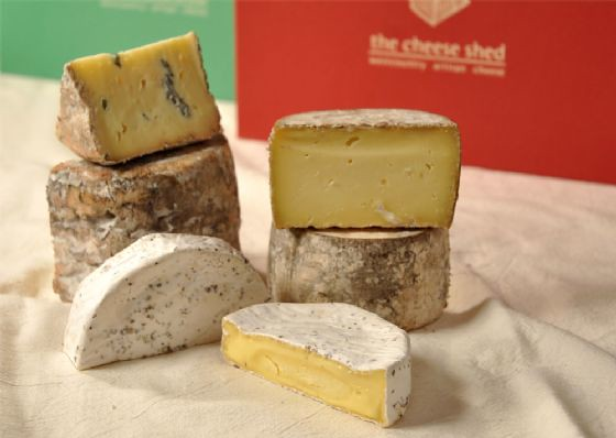 xmas-3-2010-cheese[ekm]560x398[ekm]