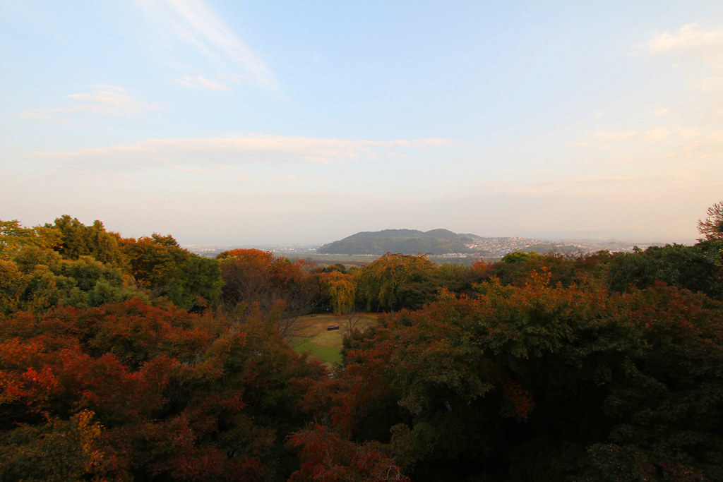 Kyoto, the city of Japanese traditions and culture Part3 (25)