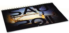 SAU 2011 Calendar Cover (Mr Matboy) Tags: bridge white skyline calendar harbour matthew over sydney sau preview gtr r34 everingham matboy