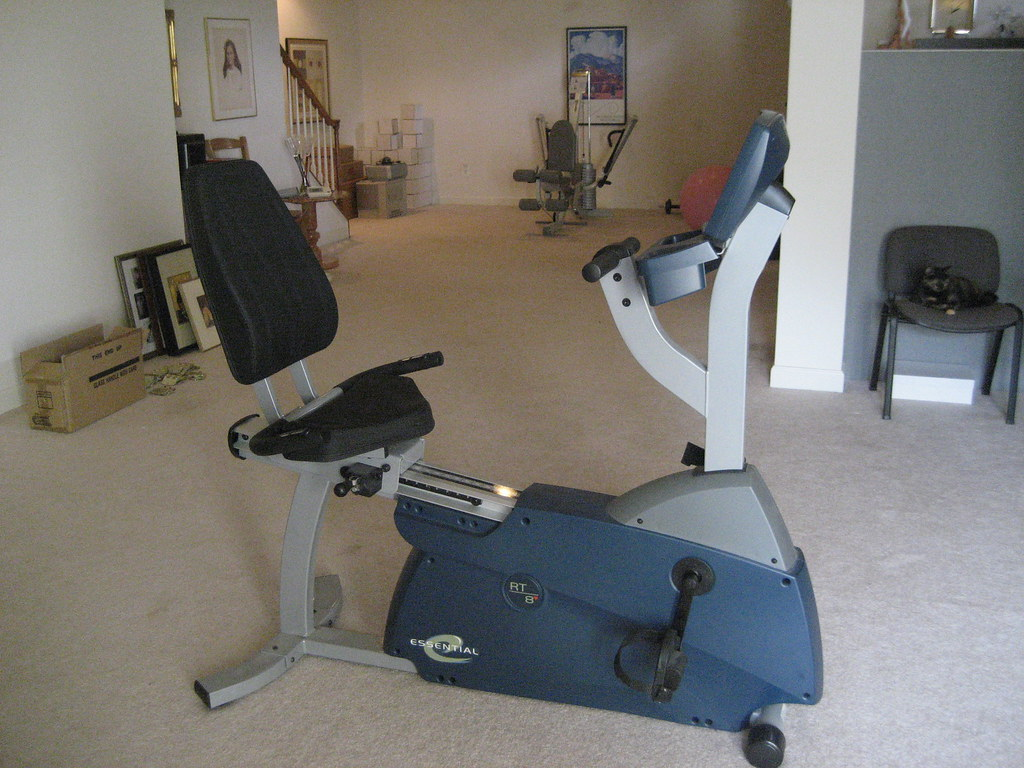 Life Fitness Essential Exercise Bike - $250