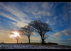 BW colour Explored. (Digital Diary........) Tags: trees sky cold colour sunrise frost freezing crank chrisconway goodlight billinge goodsky