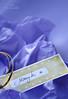 Taškuotas tag'iukas dovanai puošti / Printable Tags for Gifts (Du Žiedeliai { Vestuvinė floristika }) Tags: christmas xmas blue color golden design graphicdesign diy colours handmade decorative tag decoration tags dot polkadots gift ribbon colourful dots decor nametag dotty papercraft svente printable printit gifttag kalėdos grafika ziema giftags forchristmas žiema originali pasidarykpats šventė dekoracija printabletags diygifttags duziedeliai dužiedeliai vardokorteles korteles wwwduziedeliailt diytag sventei atsispausdinti papuosimasdekoras