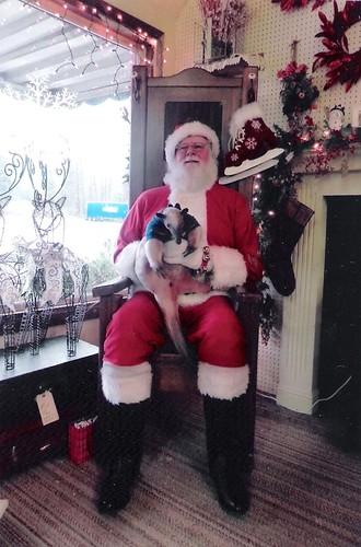 Merry Christmas 5281829920_1d14779d5c