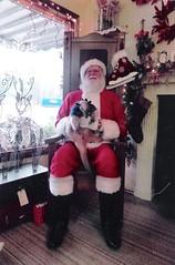 Pua's visit with Santa