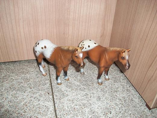 New arrivals in my herd! 5282584927_94437b1e29_z