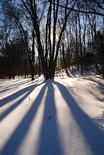 Shadows and Snow