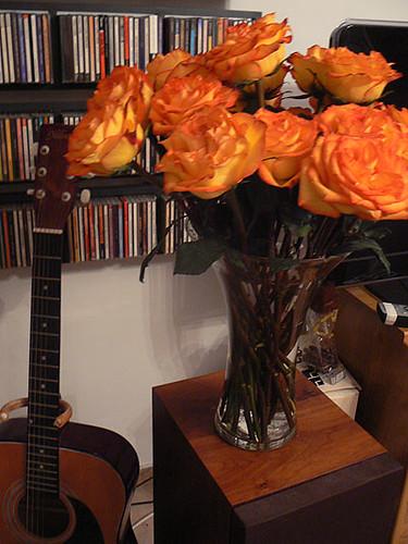 les roses d'Olivier.jpg