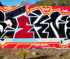 Tekn (3vidence) Tags: graffiti northbay tekn