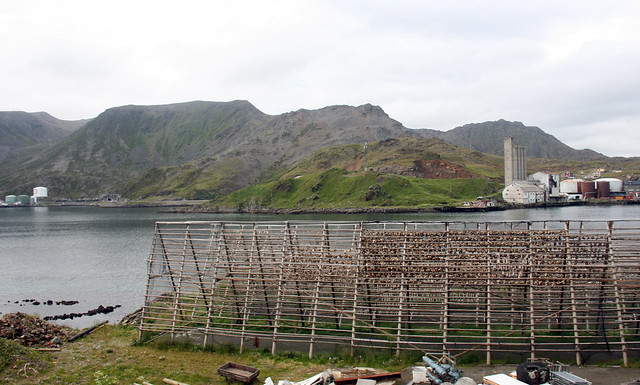 IMG_4932 Nordkapp fish racks