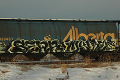 Sear & Nykel (A & P Bench) Tags: canada train bench graffiti pacific stock grain canadian hopper railfan freight rolling rollingstock benching