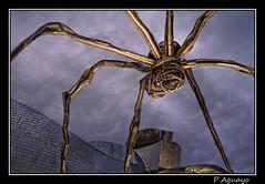 Guggenheim 1 (P. Aguayo) Tags: bilbao guggenheim museo