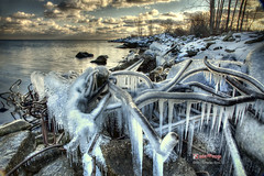 Ice Queen (Charles Bodi) Tags: winter snow ice photography lakeshore lakeontario icicles icequeen charlesbodi ridemypony iceonwires