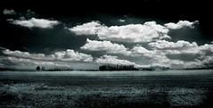 ...Panorama ad occhi chiusi, con tepore di bisbigli,sorrisi e promesse...landscape with eyes closed, with whispers of warmth, smiles and promises ... (UBU ♛) Tags: blue blancoynegro blackwhite noiretblanc kodak blu blues bleu dreams biancoenero blunotte blureale ©ubu blutristezza unamusicaintesta landscapeinblues bluubu luciombreepiccolicristalli misacheègiuntaloradismettere