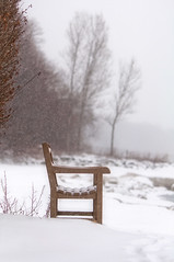 Snowfall knocking on my door early in the morning (pixelmama) Tags: snow fence bench solitude quiet peace lakemichigan snowfall gettyimages hbw bokehwednesday lakeofice lakebluffillinois