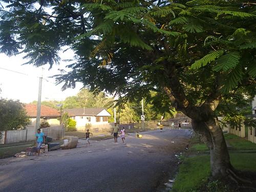 13/01/2011: Ovendean St, Yeronga