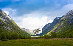 Glacial Valley (Jim Boud) Tags: storm mountains tree field norway canon eos europe shadows hike norwegian valley digitalrebel lonetree stormclouds xsi grassy scandanavia glacialvalley 450d jimboud jamesboud