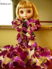 190/365 Aloha Summer