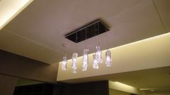 20110117-忍不住再拍一下燈