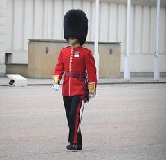 Img554950nx2 (veryamateurish) Tags: unitedkingdom british military army london wellingtonbarracks changingoftheguard publicduties ceremonial guardmounting newguard footguards householddivision grenadierguards