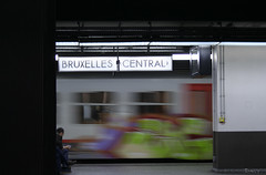 Train Art in Brussel Centraal... (Daily .) Tags: brusselcentraal bruxellescentral station gare train trainart bruxelles brussel colors