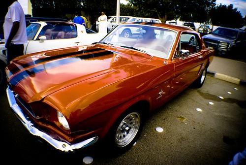 Classic Car (15)