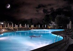 Late night swim (Violet Kashi) Tags: moon pool night swimming photography shark ps greece צילום cs5