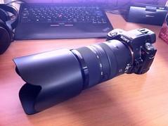 α55 + 70-300mm F4.5-5.6 G SSM